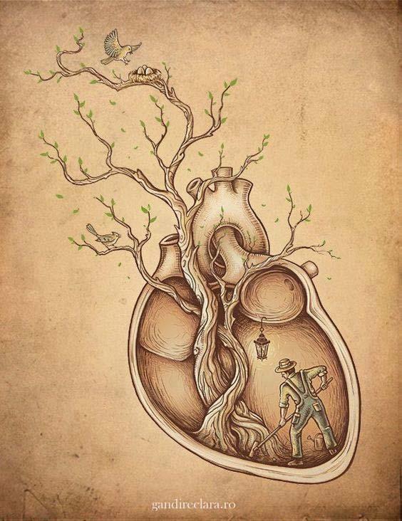 Inima - copacul vietii